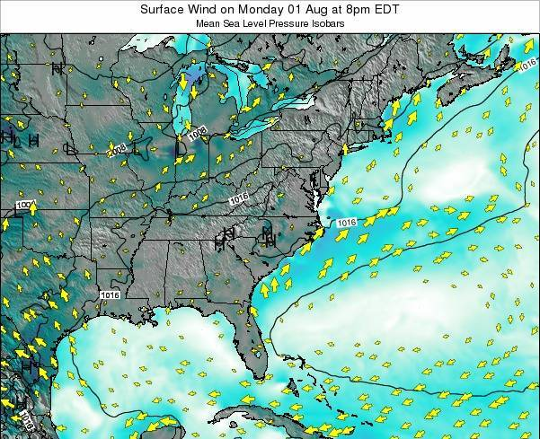 North-Carolina Surface Wind on Sunday 24 Sep at 8am EDT