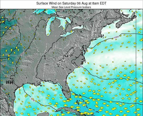 North-Carolina Surface Wind on Saturday 26 May at 2am EDT map