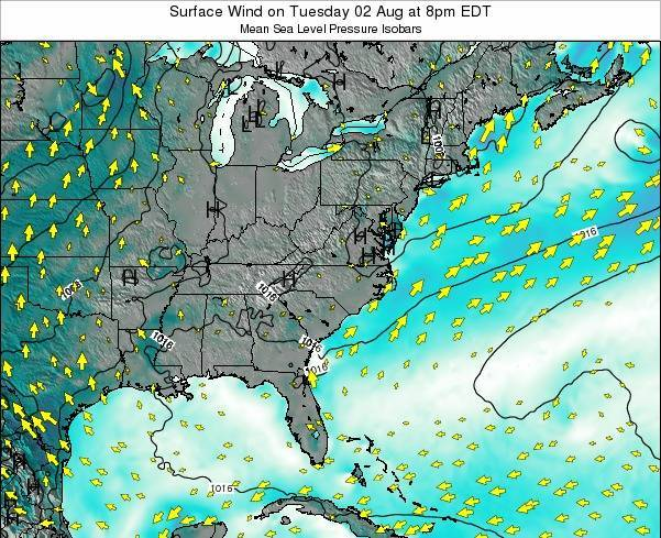 North-Carolina Surface Wind on Wednesday 06 Aug at 8pm EDT