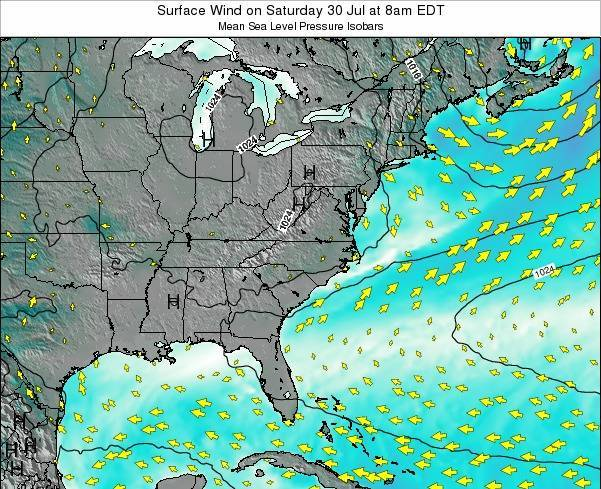North-Carolina Surface Wind on Monday 30 May at 2am EDT