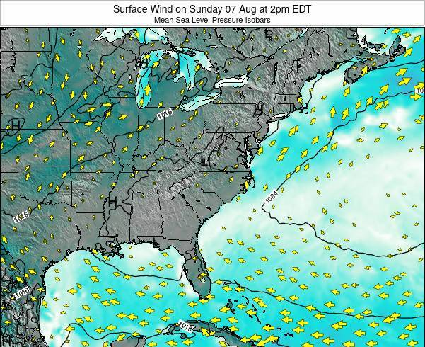 North-Carolina Surface Wind on Thursday 30 May at 2am EDT