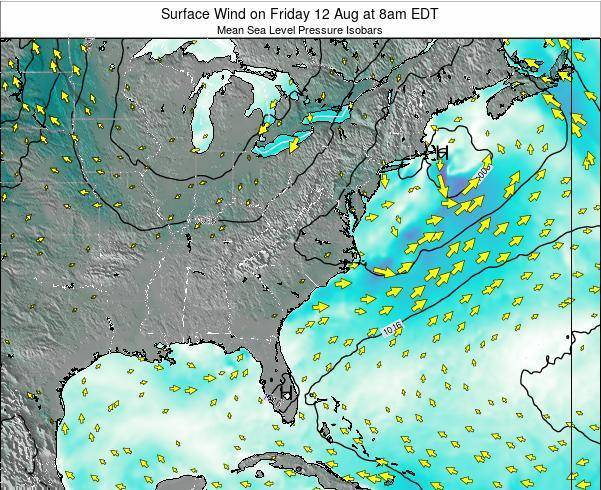 North-Carolina Surface Wind on Friday 01 Dec at 1pm EST map