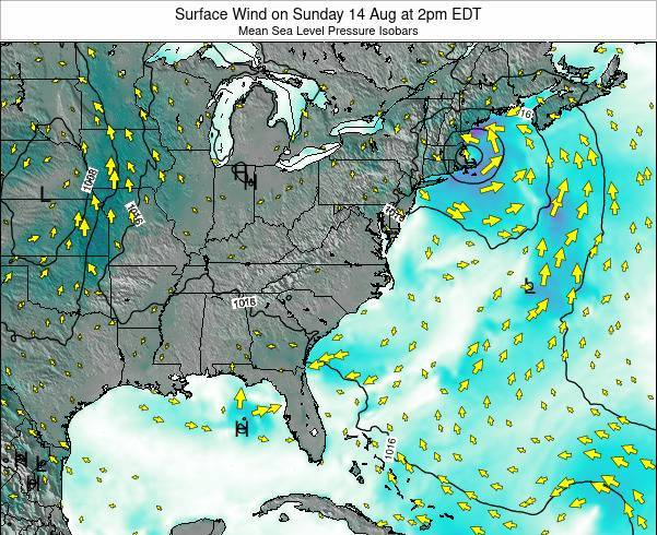 North-Carolina Surface Wind on Friday 07 Aug at 8pm EDT
