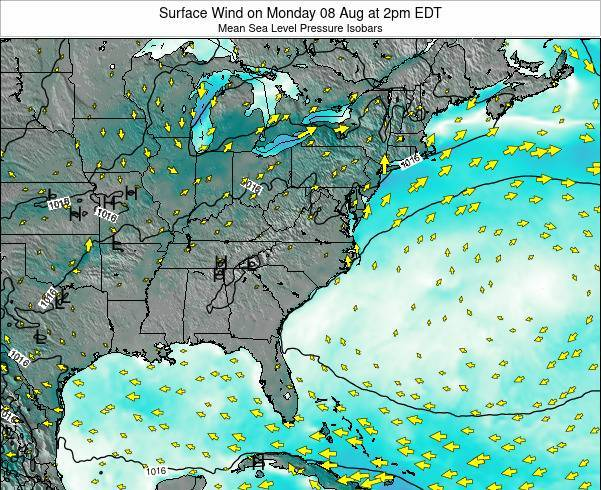 North-Carolina Surface Wind on Monday 21 Apr at 8pm EDT