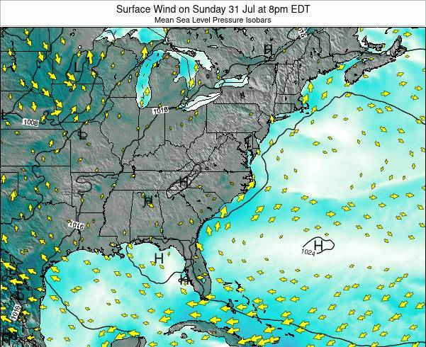 North-Carolina Surface Wind on Tuesday 24 Jan at 1pm EST