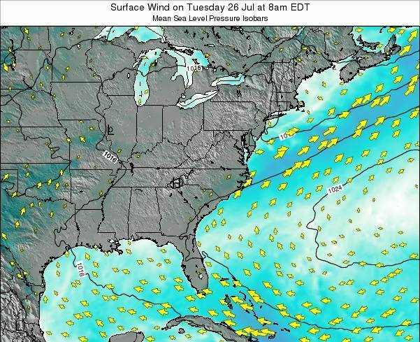 North-Carolina Surface Wind on Wednesday 19 Jun at 8am EDT