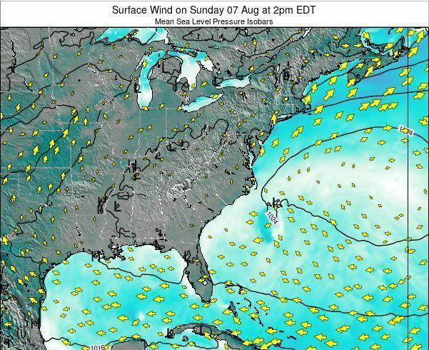 North-Carolina Surface Wind on Saturday 08 Mar at 1pm EST