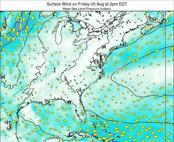 North-Carolina Surface Wind on Thursday 24 Jul at 8pm EDT