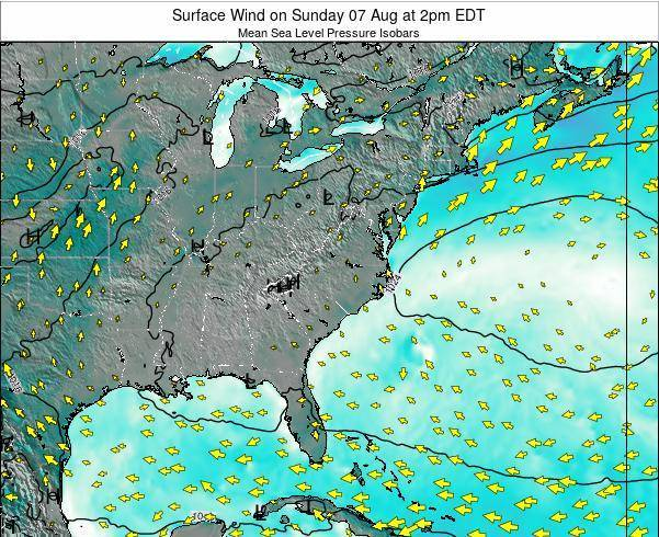 North-Carolina Surface Wind on Sunday 03 Aug at 2am EDT