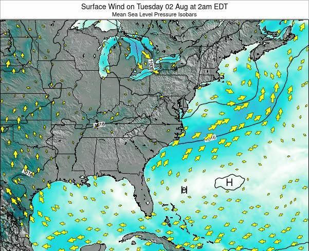 North-Carolina Surface Wind on Friday 01 Aug at 2pm EDT