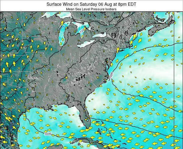 North-Carolina Surface Wind on Wednesday 20 Aug at 2am EDT