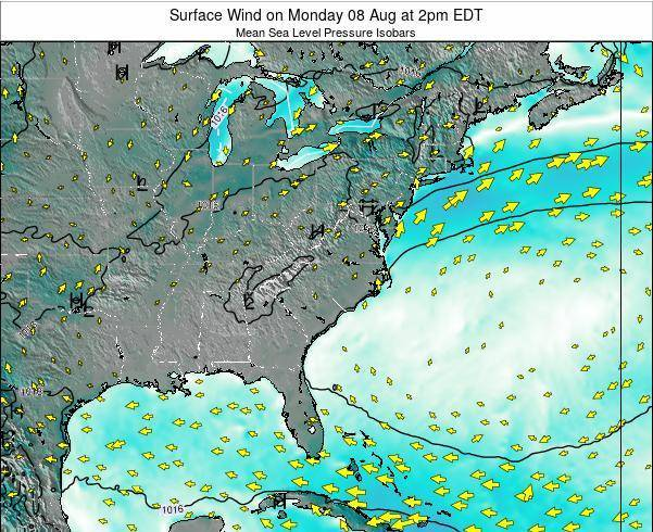 North-Carolina Surface Wind on Sunday 26 May at 8pm EDT