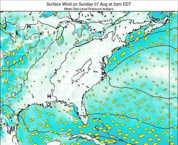 North-Carolina Surface Wind on Monday 04 Aug at 8am EDT