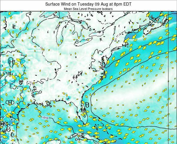 North-Carolina Surface Wind on Thursday 23 May at 8pm EDT