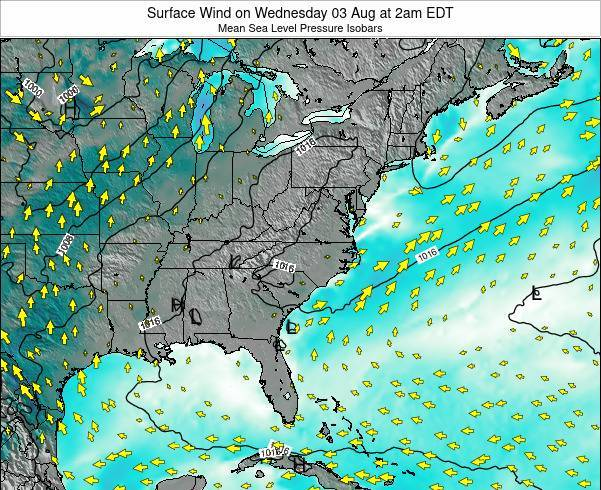 North-Carolina Surface Wind on Tuesday 16 Feb at 1pm EST