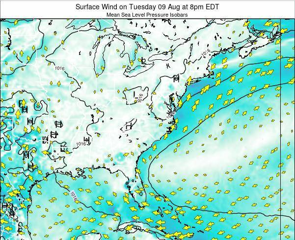 North-Carolina Surface Wind on Saturday 02 Aug at 8pm EDT