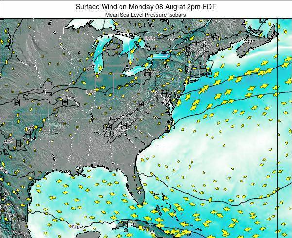 North-Carolina Surface Wind on Tuesday 22 Apr at 8am EDT