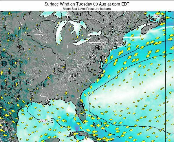 North-Carolina Surface Wind on Wednesday 23 Apr at 2am EDT