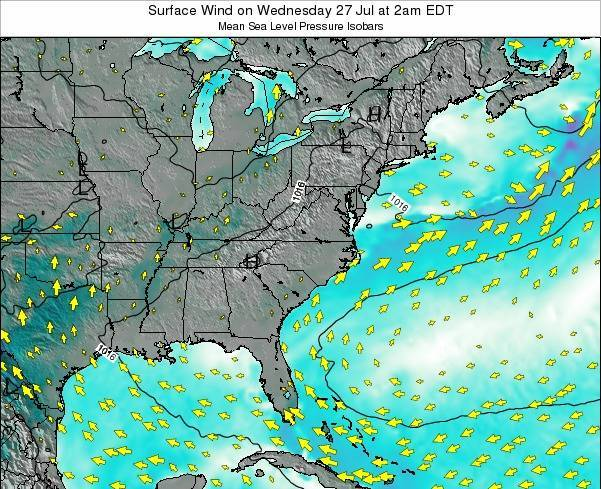 North-Carolina Surface Wind on Tuesday 05 Aug at 2am EDT