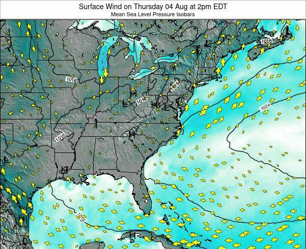 North-Carolina Surface Wind on Saturday 13 Feb at 1am EST