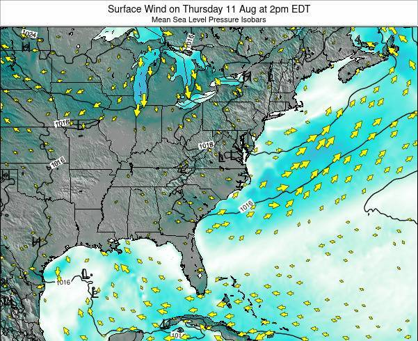 North-Carolina Surface Wind on Thursday 23 Feb at 1am EST