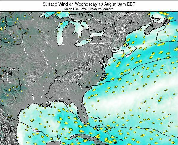 North-Carolina Surface Wind on Saturday 23 Aug at 2pm EDT
