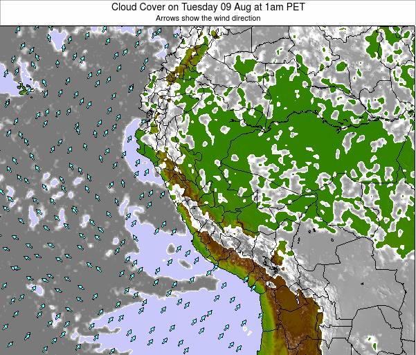 Peru Cloud Cover on Tuesday 11 Mar at 1am PET