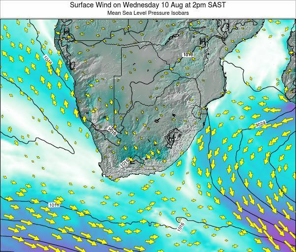 Swaziland Surface Wind on Friday 13 Dec at 2pm SAST
