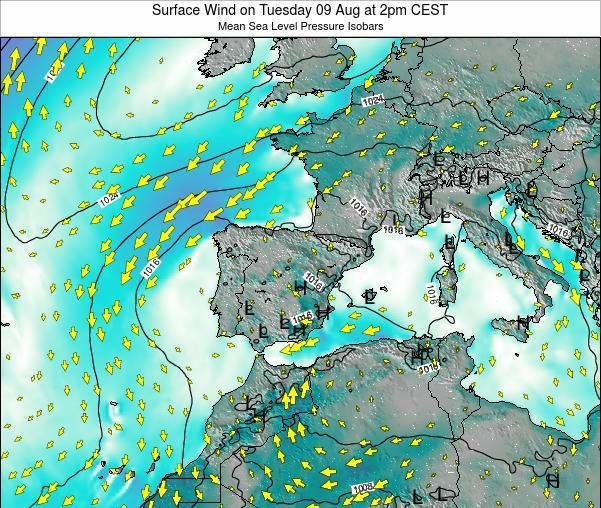 Spain Surface Wind on Monday 24 Jun at 2am CEST