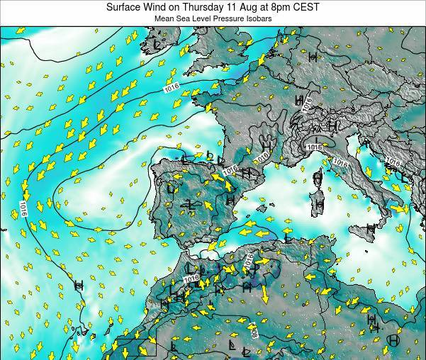 Spain Surface Wind on Monday 24 Jun at 2pm CEST