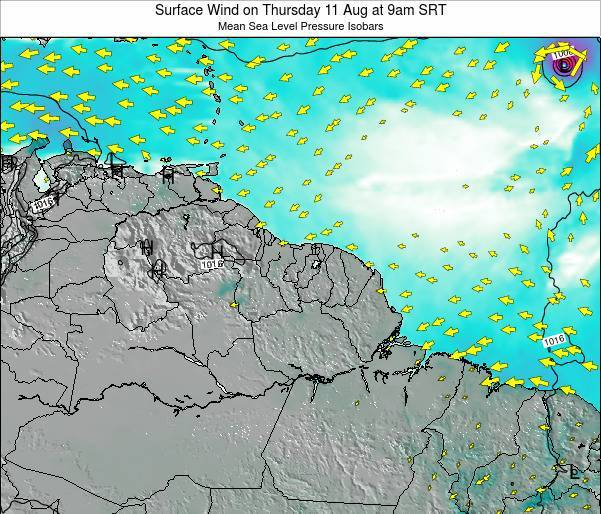 French Guiana Surface Wind on Thursday 13 Mar at 3am SRT