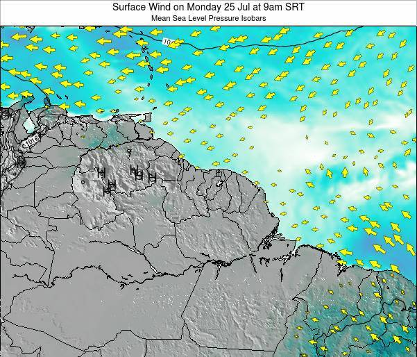 French Guiana Surface Wind on Friday 24 May at 3am SRT