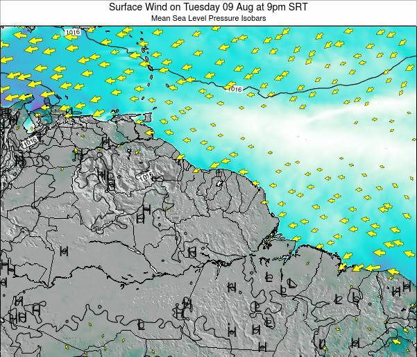French Guiana Surface Wind on Saturday 19 Apr at 3am SRT