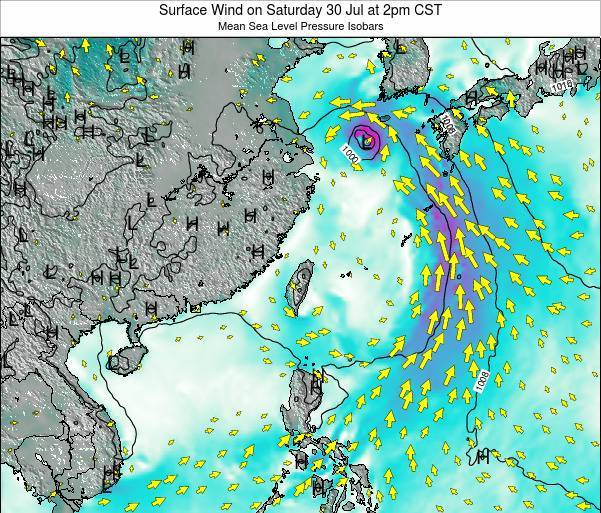 Taiwan Surface Wind on Wednesday 30 Jul at 8pm CST map