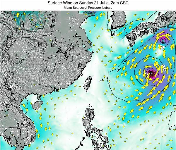 Taiwan Surface Wind on Saturday 06 Jun at 2am CST
