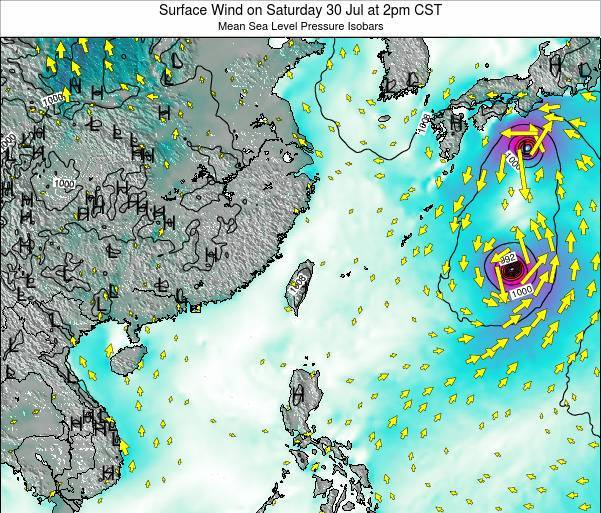 Taiwan Surface Wind on Wednesday 30 Jul at 8am CST