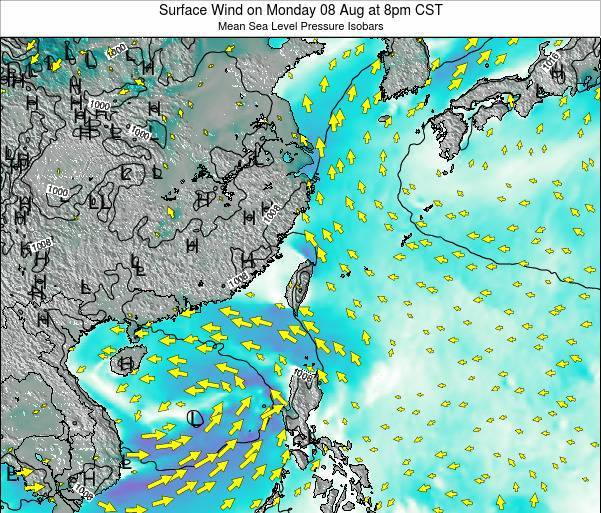 Taiwan Surface Wind on Monday 20 May at 2pm CST