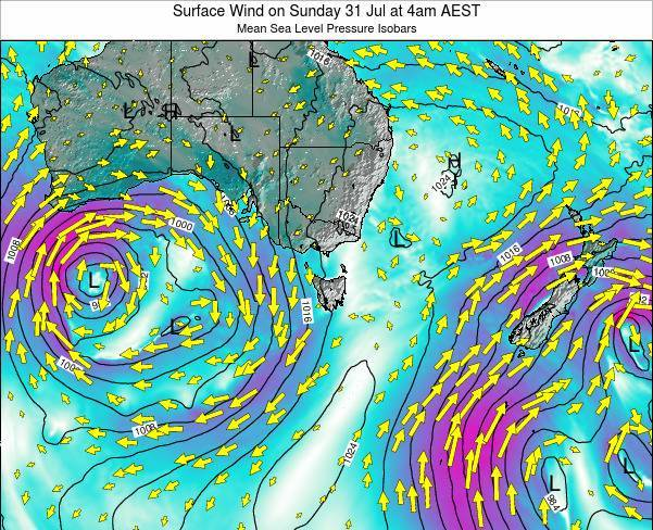 Tasmania Surface Wind on Saturday 01 Jun at 4am EST