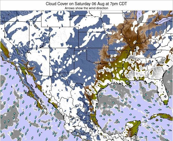 Texas Cloud Cover on Monday 27 May at 1am CDT
