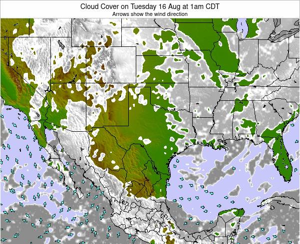 Texas Cloud Cover on Tuesday 25 Jun at 7pm CDT