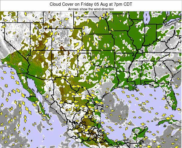 Texas Cloud Cover on Friday 31 Oct at 1pm CDT