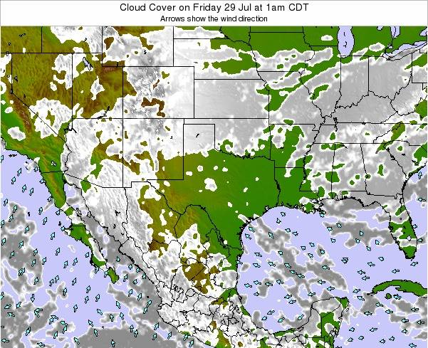 Texas Cloud Cover on Tuesday 29 Jul at 7pm CDT