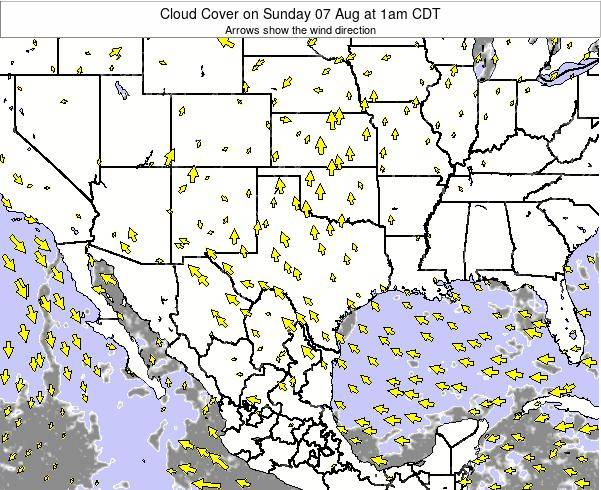 Texas Cloud Cover on Monday 20 May at 7pm CDT