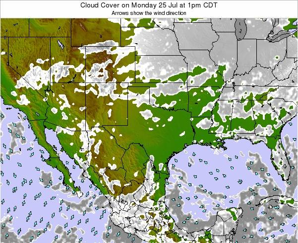 Texas Cloud Cover on Monday 24 Nov at 6pm CST