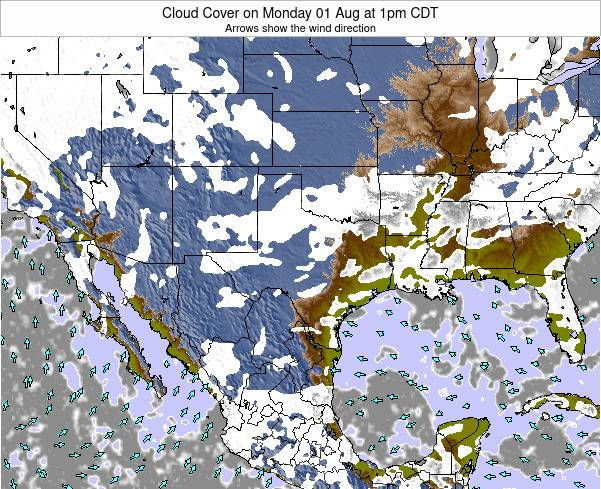 Texas Cloud Cover on Friday 25 Apr at 7pm CDT