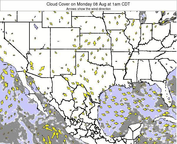 Texas Cloud Cover on Thursday 23 May at 7pm CDT