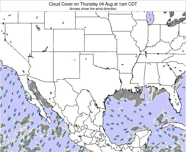Texas Cloud Cover on Monday 23 Dec at 12pm CST