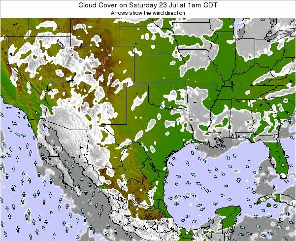 Texas Cloud Cover on Friday 24 May at 1pm CDT