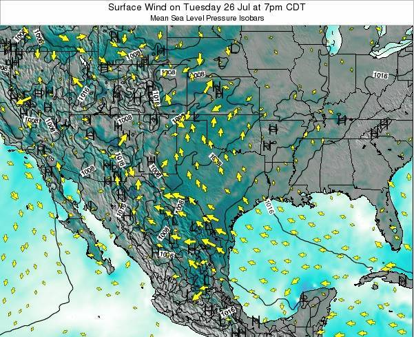 Texas Surface Wind on Sunday 03 Aug at 1pm CDT