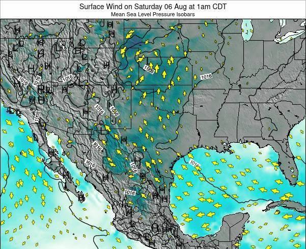 Texas Surface Wind on Tuesday 24 Dec at 12pm CST